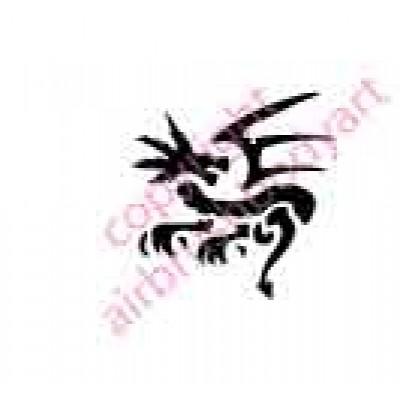 0021 dragon re-usable stencil