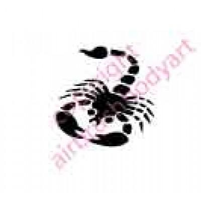 0033 scorpion re-usable stencil