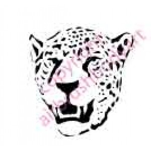 0133 leopard re-usable stencil