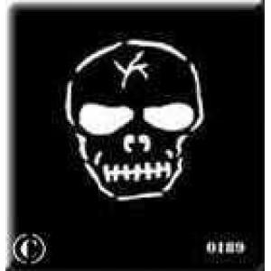 0189 reusable skull stencil