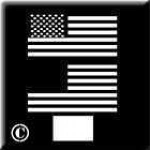 0246 reusable small US flag