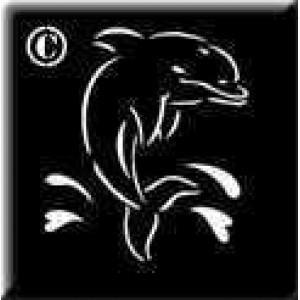 0418 reusable dolphin stencil