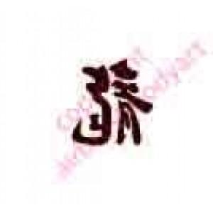 0422 kanji/chinese writing dragon