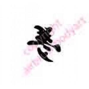 0423 kanji/chinese writing dream
