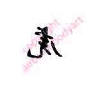 0427 kanji/chinese writing tiger