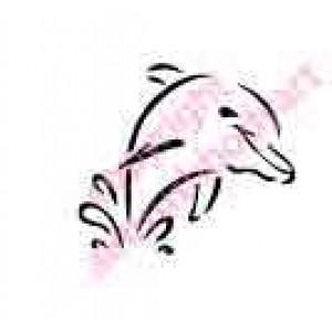 0436 dolphin