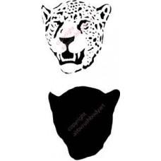 l007 leopard